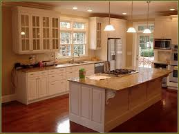 Kitchen Cabinets Knoxville Tn Small Awesome Kitchens Remodeling Best Decorations Ideas And