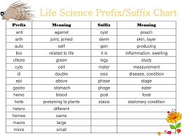 Suffix Meanings Chart Ppt Prefixes And Suffixes Of Life Science Powerpoint