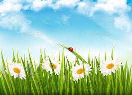 Grass and flowers background Green Screen Photography Nature Background With Green Grass Flowers And Butterfly Seasons Nature Graphicriver Nature Background With Green Grass Flowers And Butterfly By Almoond
