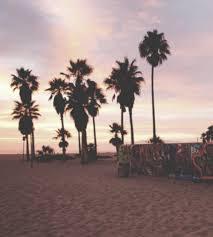 palm trees sunset tumblr. Palm Trees Sunset Tumblr U