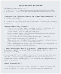 Sample Of Objective For Resume Terrific Objective Resume Examples