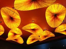 artsy lighting. dragonfly artsy ceiling lighting