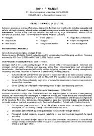 executive resume template format by john finance