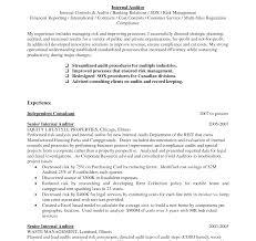 Internal Resume Audit Manager Sample Top Nardellidesign Com Cover