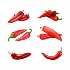 chili peppers vector. Beautiful Chili Red Chili Exclusive For Premium Users View Vector In Chili Peppers Vector L