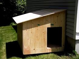build your own dog kennel interesting ideas for home