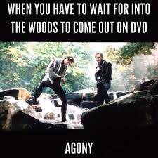 Chris Pine in Agony - the funniest scene in Into The Woods | No ... via Relatably.com