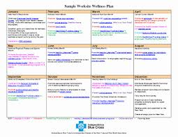 Personal Wellness Plan Template Best Of 35 Best Wellness Recovery ...