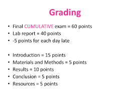 fruit fly lab report basics completed individually everyone s 15 grading final cumulative exam 60 points lab report 40 points 5 points for each day late introduction 15 points materials and methods 5 points