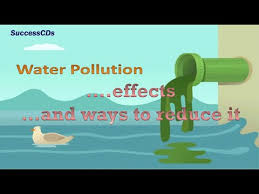 How To Make Chart On Pollution Water Pollution Effects And The Ways To Reduce It Youtube