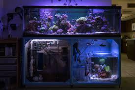 Freshwater Aquarium Sump Plumbing Design Two Tanks One Sump Whos Doing It Reef2reef Saltwater
