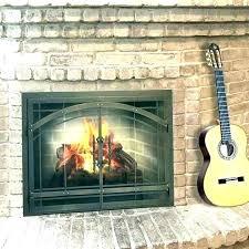 fireplace insert doors glass door gas