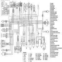 100 ideas 12v wiring diagram on bestcoloringxmas download yamaha aerox 155 service manual at Yamaha Aerox Yq 50 Wiring Diagram