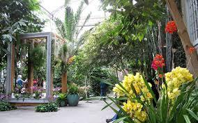 the mediterranean room at the u s botanic garden