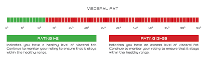 Visceral Fat Chart Visceral Fat Tanita Australia