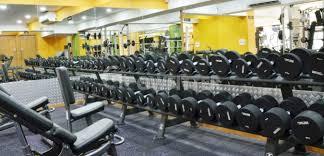 anytime fitness sushant lok phase i gurgaon gym