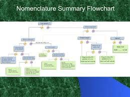 Ch 6 Nomenclature