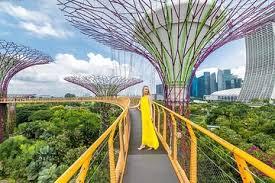singapore zoo tours tickets
