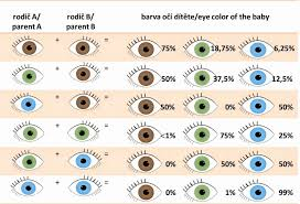 Eye Color Probability Chart 58 Prototypic Eye Color Chart From Parents