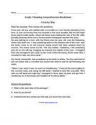 Math. 3rd grade reading comprehension printables: Reading ...