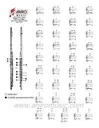 Piccolo Flute Finger Chart Piccolo Finger Chart All Notes B Flat Fingering Chart For