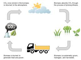 Compare And Contrast Renewable And Nonrenewable Resources Venn Diagram Viaspace Biomass Versus Fossil Fuels Solar And Wind