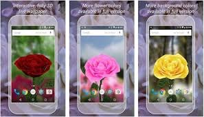 5 beautiful rose live wallpaper apps