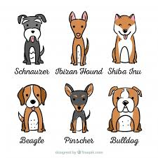 ortment of dogs with six diffe breeds