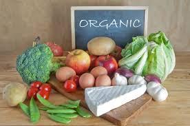 Картинки по запросу Органические продукты