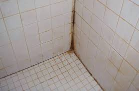 cleaning mold off bathroom grout cleaning black mould from shower grout orange mold cleaning black mould