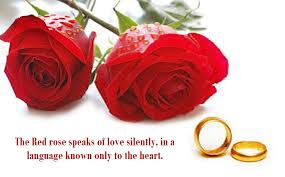 Beautiful Red Roses With Quotes
