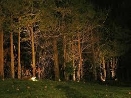 landscape lighting trees. Exellent Trees Modern Landscape Lighting Trees For Other Artistic Landscapes Low Voltage In
