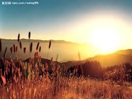 陽光的圖片搜尋結果