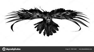 эскиз летающих птиц ворона вид спереди стоковое фото Khius