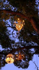 photo of chandelier tree los angeles ca united states make sure you