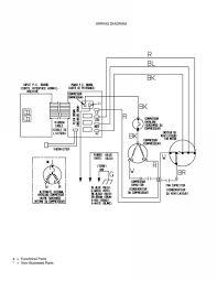 wiring diagram dayton ac electric motor new two pressor motor wiring diagram wiring data schema