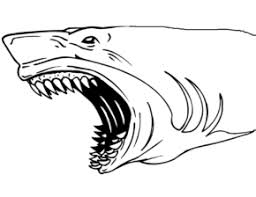 Small Picture Sharks Shark Jaws Coloring Page Shark Tiger Shark Sharks