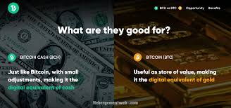 The dedicated slp exchange cryptophyl launched this year, which created an. Kim Dotcom Publishes Website That Highlights The Benefits Of Bitcoin Cash Bitcoin News