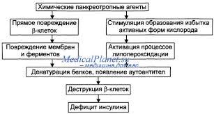 Баки для моющего средства Реферат Сахарный диабет bestreferat ru