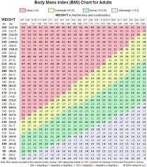 Calculating Bmi Body Mass Index