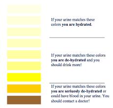 Medical Urine Color Chart Urine Color Chart Martins Rugbycoach Blog