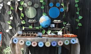 Wild Kratts Birthday Party Birthday Party For Pbs Kids