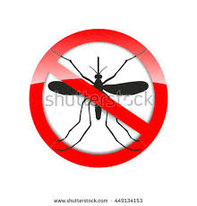 mosquito icon vector flat icon isolated on white background in a red crossed out circle