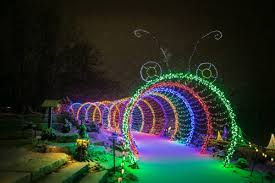 Green Bay Garden Of Lights