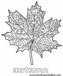 Small Picture leaves coloring page 35 free Color Plants Pinterest Leaves