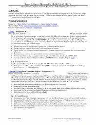 Program Manager Resume Examples Tomyumtumweb Com