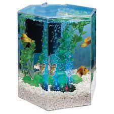 fish tank for office. desktop aquarium tank beta fish kit 1 gallon home office hallway child room new for
