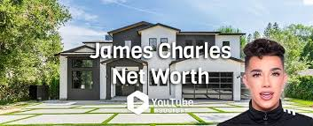 But that didn't end his career. James Charles Net Worth Youtube Society