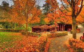 秋天的自然景色,高清壁纸,风景图片-回车桌面
