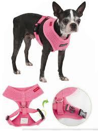 Puppia Soft Dog Harness Sizing Chart Puppia Soft Dog Harness